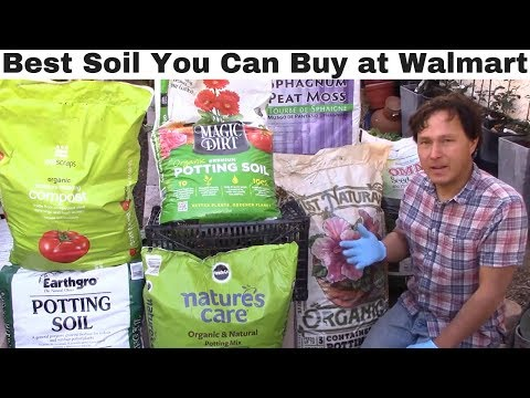Best Vegetable Garden Soil You Can Buy at Walmart + What to