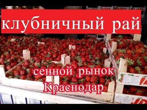 СЕННОЙ рынок КРАСНОДАР Клубничный рай Прогулка по Красной май 2018