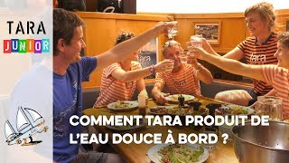 [Tara Junior] Comment Tara produit de l'eau douce à bord ? // How to produce freshwater onboard?