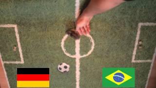 Zelda der WM-Hamster: Deutschland gegen Brasilien