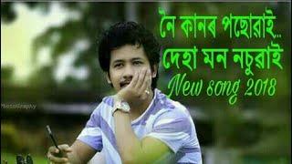Noi kandor posuwai || new assamese song 2018 || whtsapp lyric status || achrujya borpatra