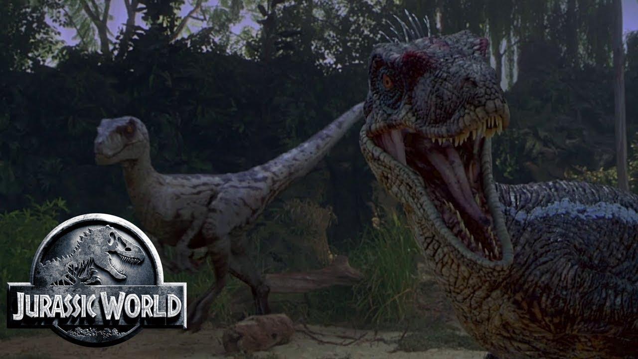The different raptor tribes of isla sorna jurassic park feathers ingen site b youtube - Film de dinosaure jurassic park ...