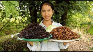 Cooking Crickets at village - Cooking Fried Crickets in My Village -How To Catch and Cook Crickets
