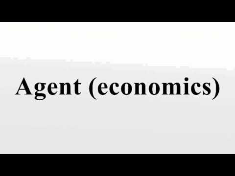 Agent (economics)