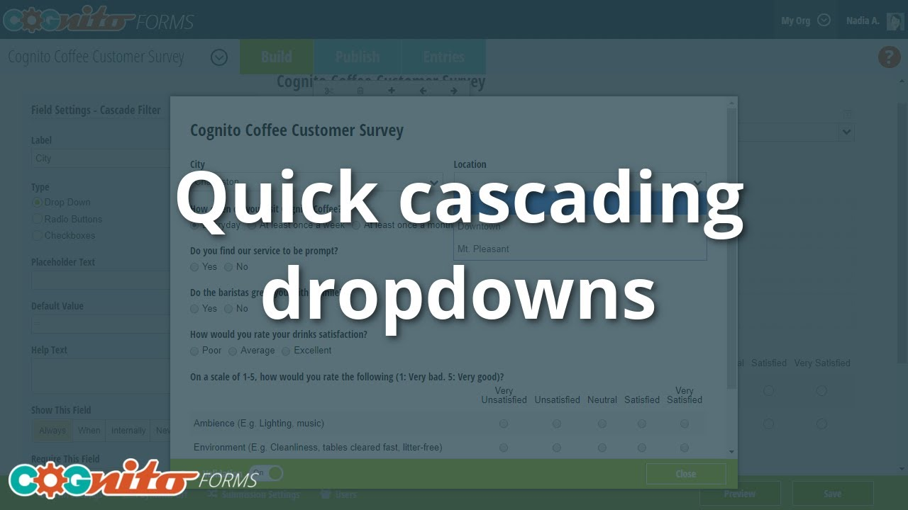 Quick Cascading Dropdowns - Cognito Forms