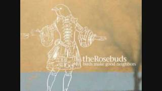 Watch Rosebuds Track Love Song video