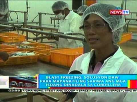 BP: Blast Freezing, solusyon daw para sa pagpreserba ng mga isda