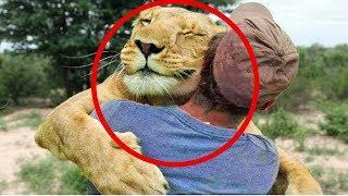 Animal Hugs   Animals Hugging People   Animals Hugging Humans   Hugging Animals Videos