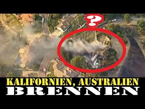 Waldbrände in Australien und Kalifornien 2019,Gebäude und Autos zerstört - Bäume hingegen unberührt?