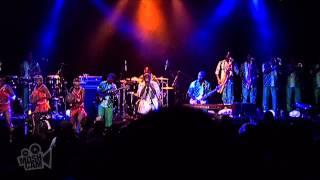 Femi Kuti - Intro/Truth Condie (Live in Sydney) | Moshcam