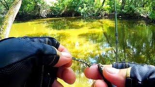 Рыбалка на протоках...