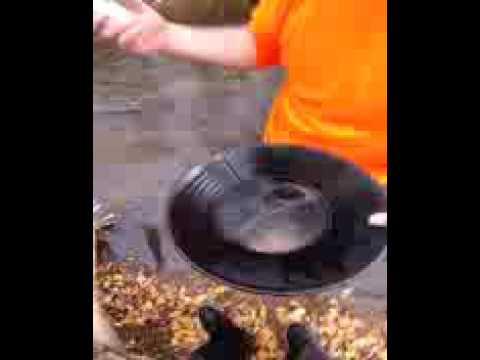 utah gold and silver panning, gold each pan