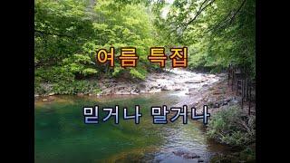 """여름특집  """"믿거나 말거나"""" 이야기 - 피클의 행복한 명리"""