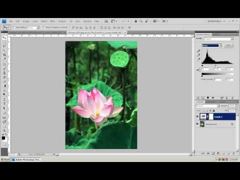 Photoshop CS4 - Phan 1 - Bai 17 - Level Adjustment CS4