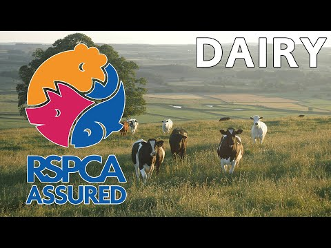 RSPCA Assured Dairy