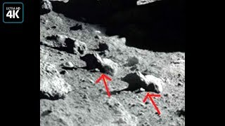 Вот почему Луну больше не изучают!