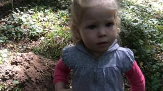 Нашли в лесу кошку и котят, забрали их домой/ видео для детей// Игрушки
