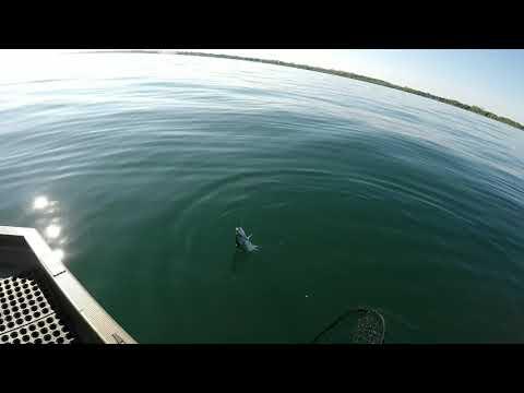 SMALL BOAT SALMON TROLLING TACTICS, Spring, Lake Ontario