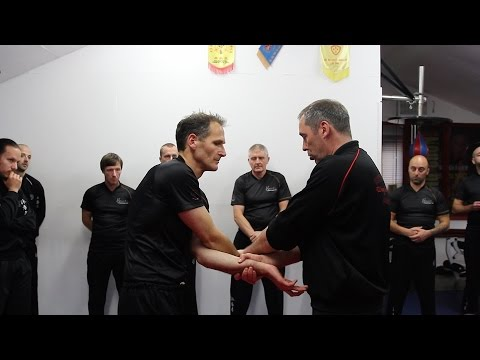 Wing Chun Kung Fu Chi Sau Crossing the Arms