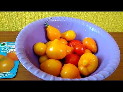 Сорт томата японский трюфель