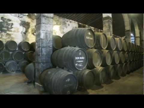 wine article Sherry Wine of Andalucia