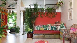 Ep 091: 750+ Houseplant Tour (Living + Dining Room & Bathroom —Part II) — Plant One On Me