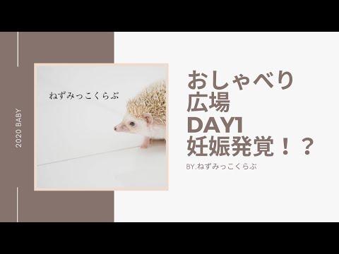 ねずみっこくらぶおしゃべり広場Day1.妊娠発覚!?