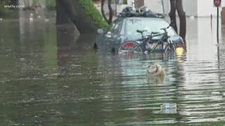 Mid-City flooding in New Orleans
