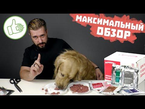 Видео: Натуральный корм SUPERPET для собак и кошек / Обзор натурального корма для кошек и собак