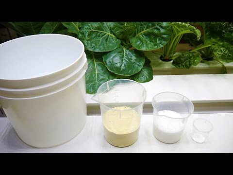 Making Your Own Hydroponic Nutrients