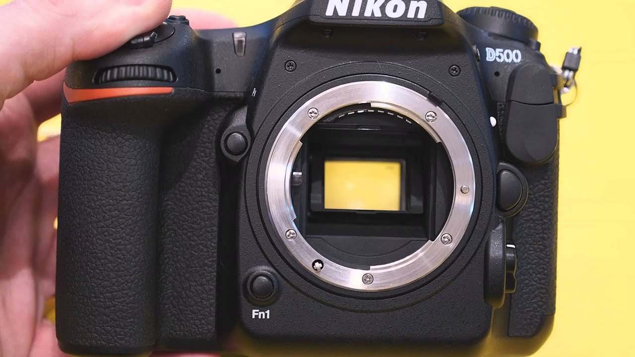 I Shot with the Nikon D500  Here Are My Thoughts