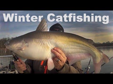Winter Catfishing