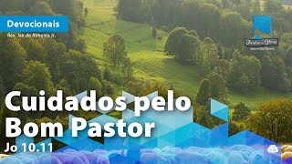 Cuidados pelo Bom Pastor   Jo 10.11