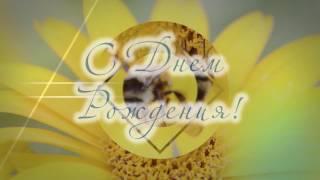 С Днем Рождения! Музыкальное видео поздравление