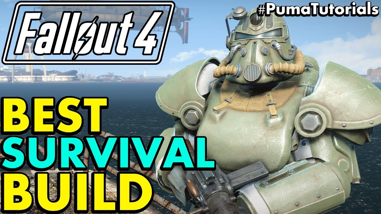 Survival Mode Build Fallout