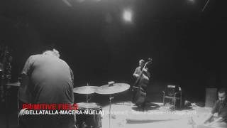 PRIMITIVE FIELD - live at Teatro il Cantiere [extract ]