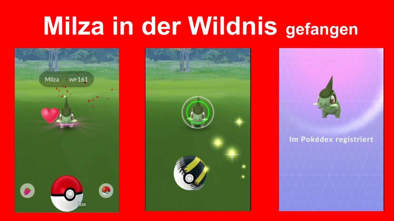 Milza in Wildnis gefunden / gefangen. So konnte ich Milza finden und fangen  - Pokemon GO Deutsch 082 - YouTube