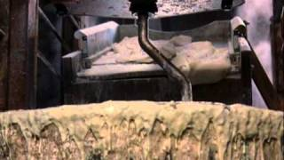 102 Dalmatians | Cruella De Vil Scenes | Part 4