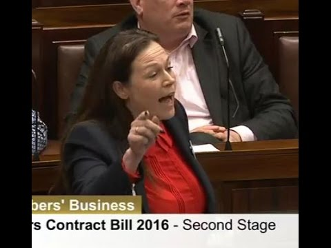 Dáil Row: 'I Am Speechless Listening To This Nonsense'