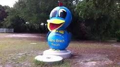"Vilano Beach Florida  ""Blue Bird of Paradise Statue"""