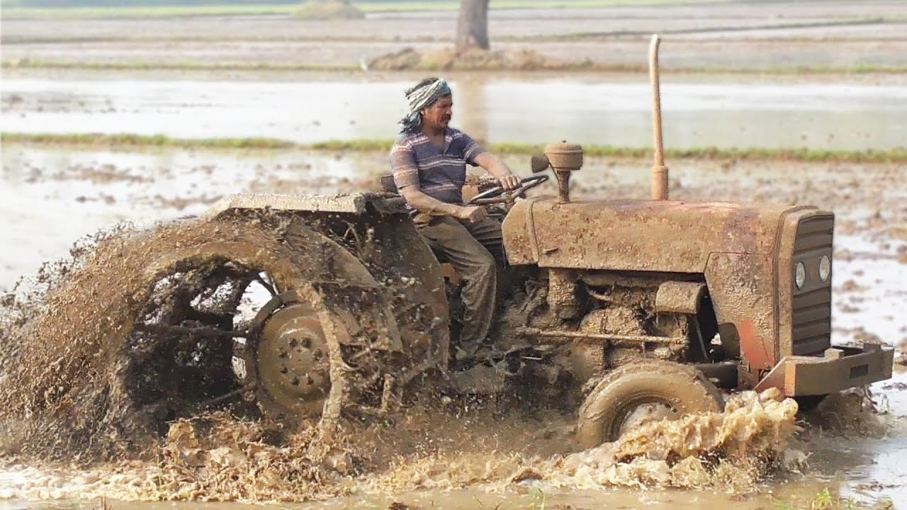Massey Ferguson(Mud Racer) Excellent Field Work | MF 241 DI | Tractor Videos | SWAMI Tractors