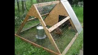 Where To Buy Chicken Coop Plans? | Buy Chicken Coop Plans & Designs Online | Download Detailed PDF