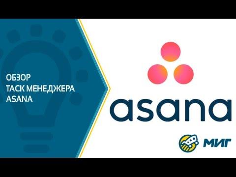 Обзор таск менеджера Asana