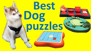 Our favorite dog puzzles to keep our dog busy – Best toys for mental stimulation & brain development