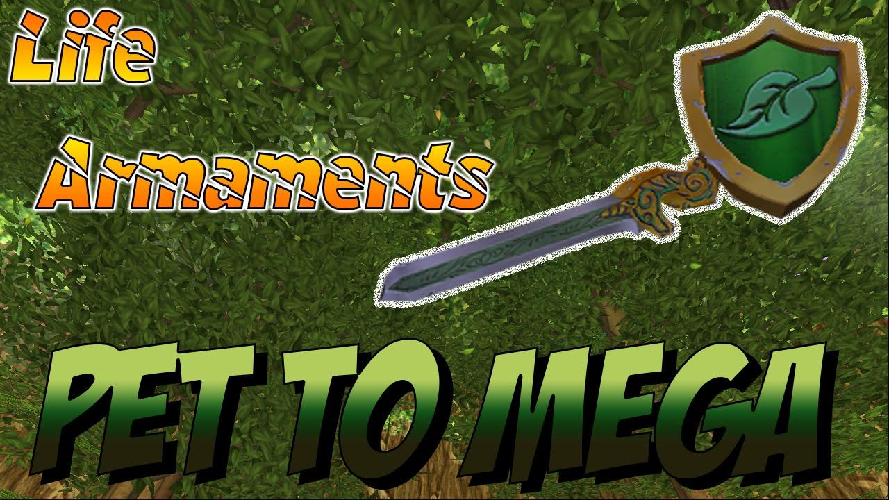 Wizard101: Pet To Mega