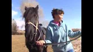 Женщина верхом. Чемпионка по конной игре