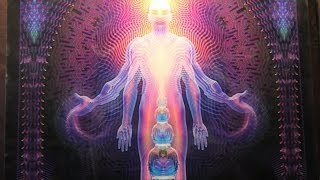 why visionary art matters by alex grey burning man 2012