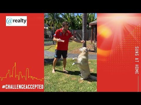 @home With @realty: Dog Challenge
