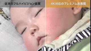 4Kハンディカム:プレミアム高画質【ソニー公式】