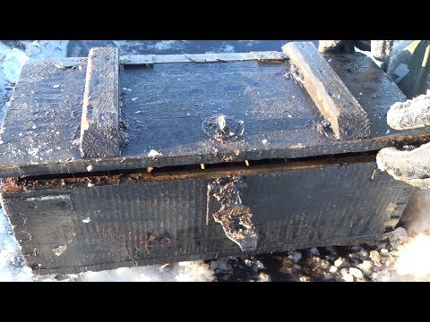 Rare weapons right under the ice! Finds with the help of a metal detector and search magnet!